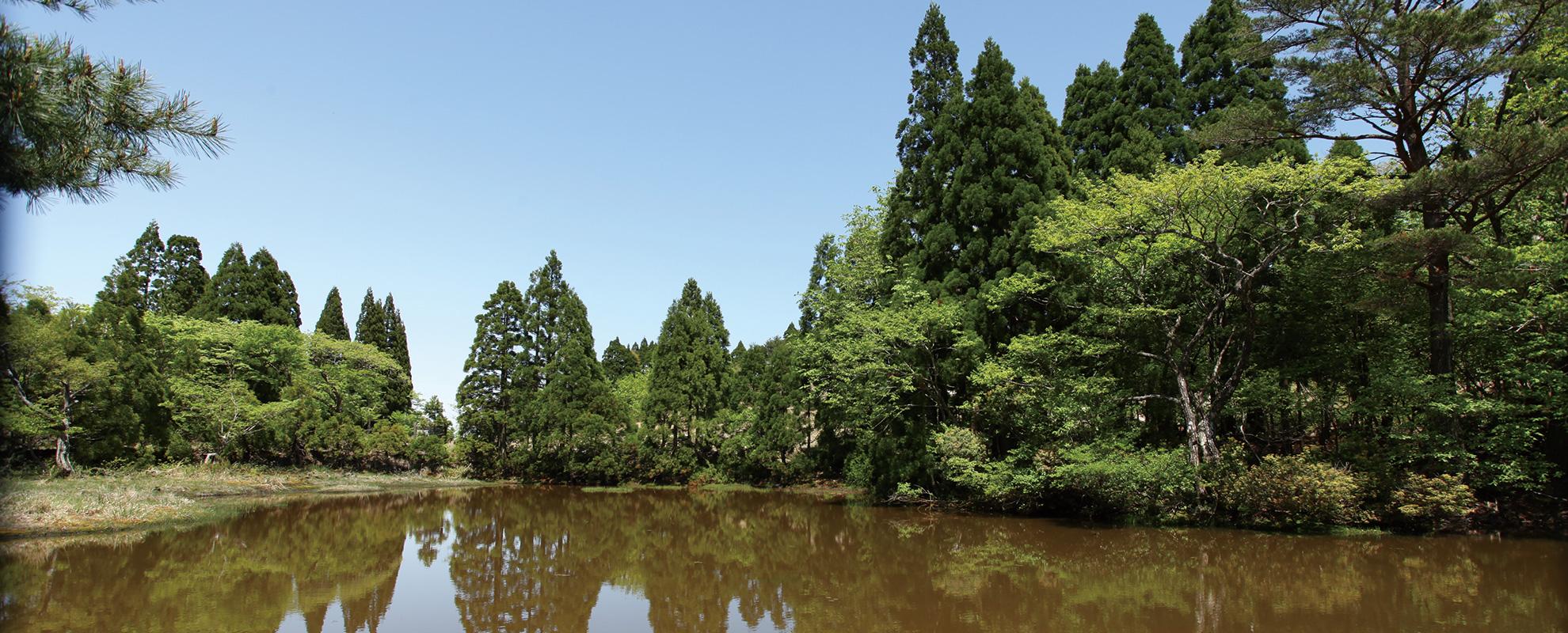 Lake Biwa and Mt. Bunagatake