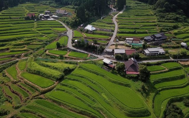 琵琶湖展望の道 蛇谷ヶ峰